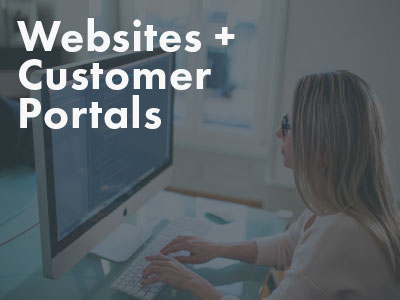 Websites and Customer Portals icon