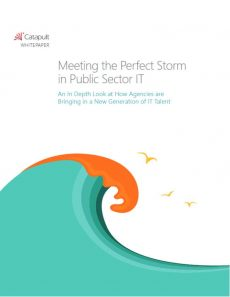 Meeting the Perfect Storm in Public Sector IT
