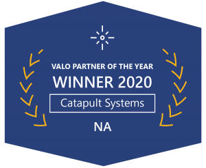 Valo Partner of the Year