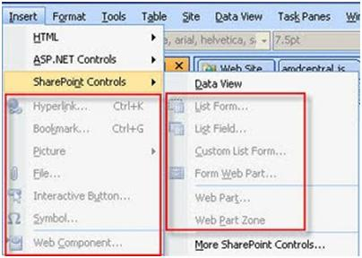 SharePoint Designer Insert Options Grayed Out - Catapult Systems